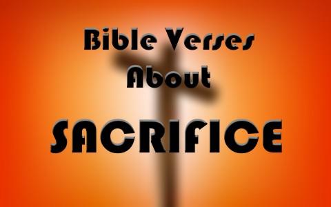 7 Important Bible Verses About Sacrifice