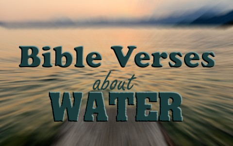 7 Bible Verses About Water With Commentary