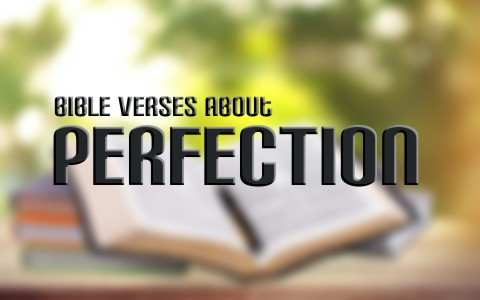 Top 7 Bible Verses About Perfection